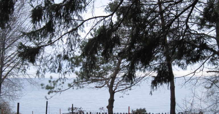 Southern Ontario before snowfall- South facing view of Lake Ontario from Port Credit in Mississauga late fall 2015.