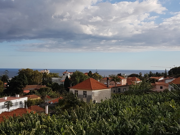 Skyline: Funchal Madeira- Sao Joao Neighbourhood2